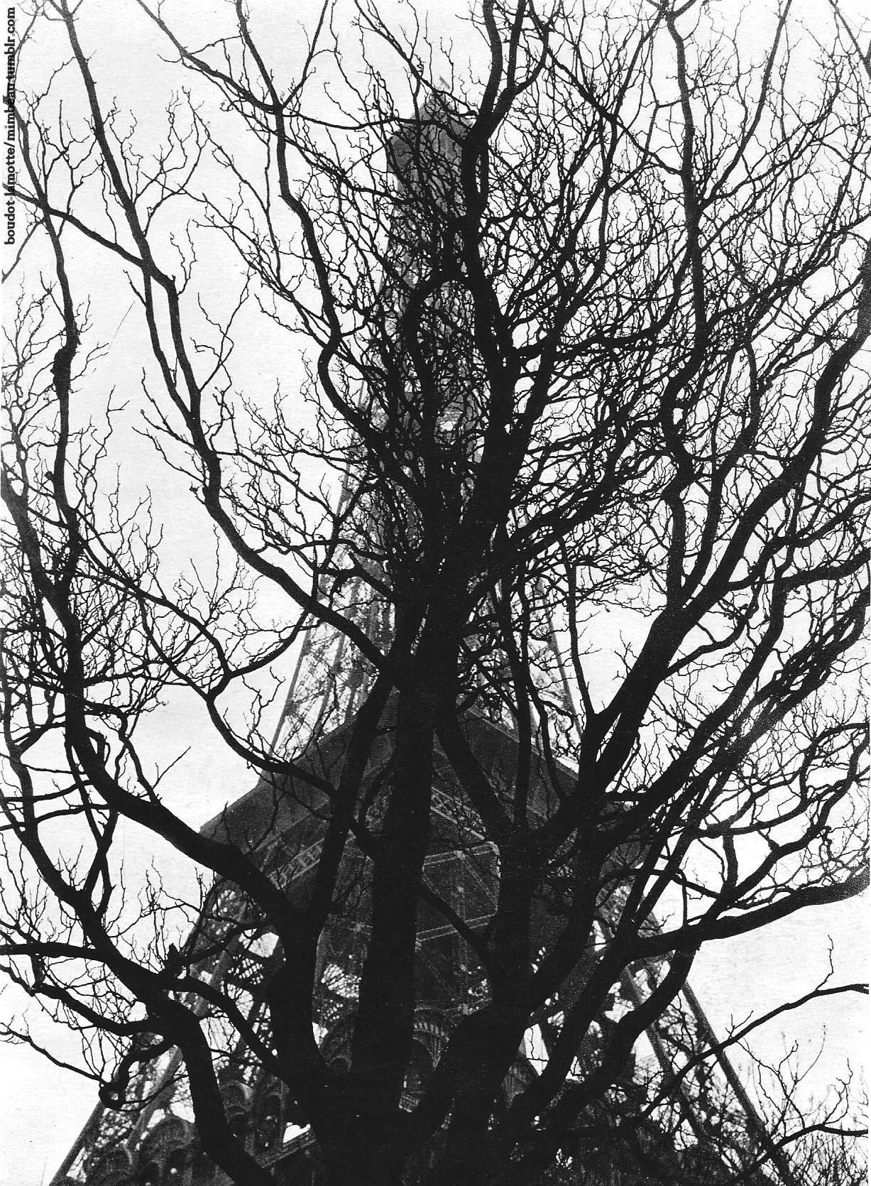 The Eiffel Tower Paris 1930s Emmanuel Boudot-Lamotte