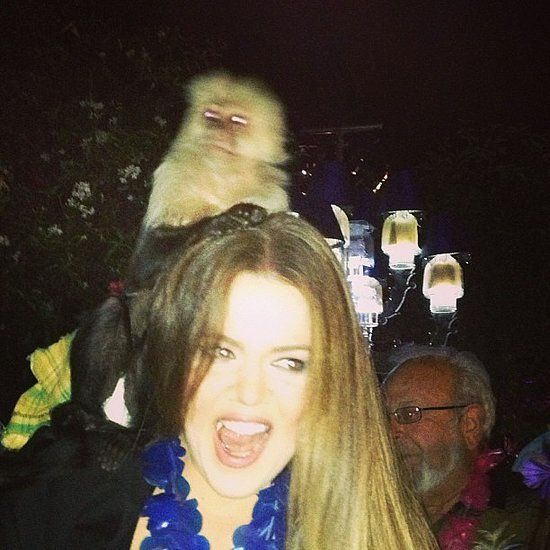 Khloé Kardashian made friends with a monkey this week.