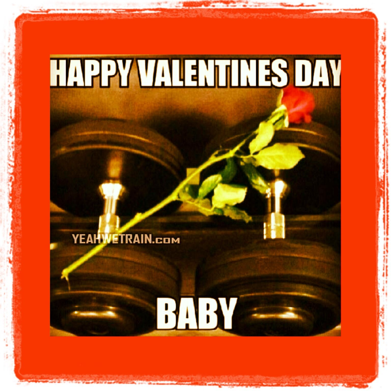 Happy Valentines Day Fitness Quotes Funny Gym Humor Workout Quotes Funny Workout Humor
