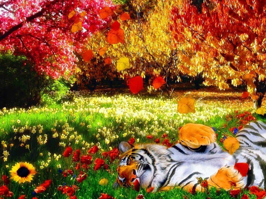 Colorful Nature With Tiger Hd Wallpaper Nature Wallpaper Color Of Life Fantasy Landscape