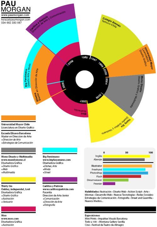 resume design pie chart