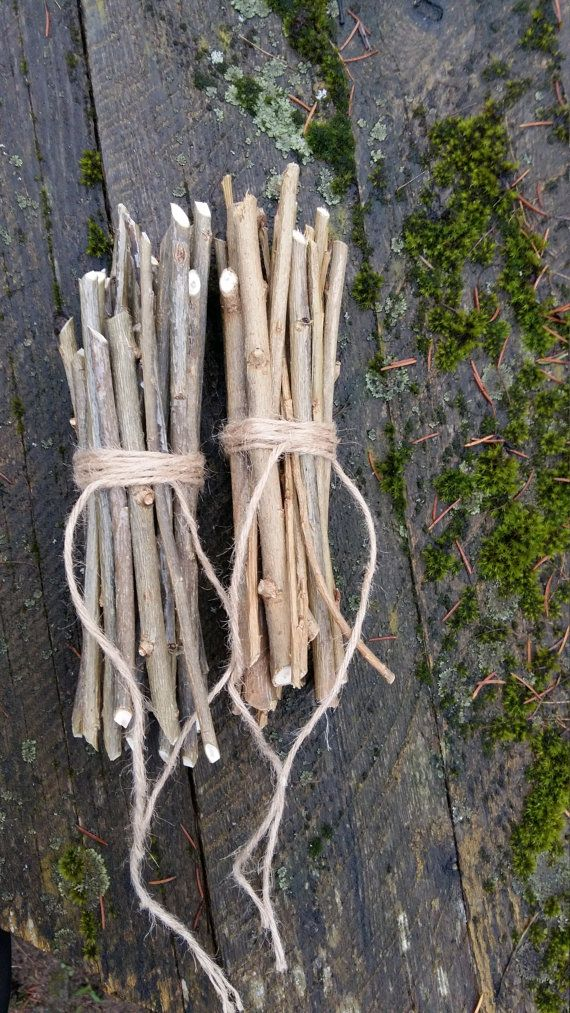 willow branches wood sticks bundle of tree twigs by goodieshill