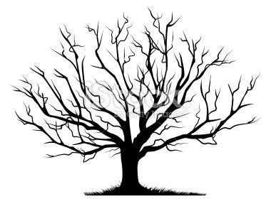 deciduous bare tree with empty branches black silhouette isolated on rh pinterest com au clip art bare tree free download bare tree clipart black and white