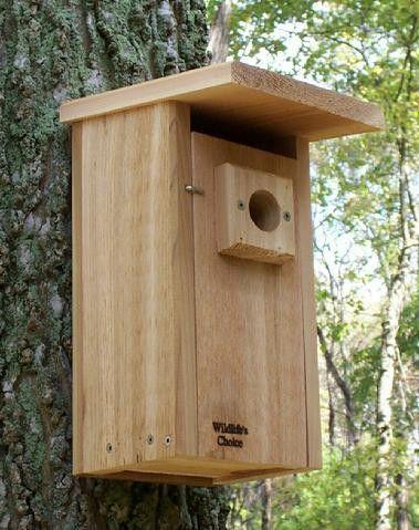 Downy Woodpecker Nestbox Bird House Plans Bird House Downy Woodpecker