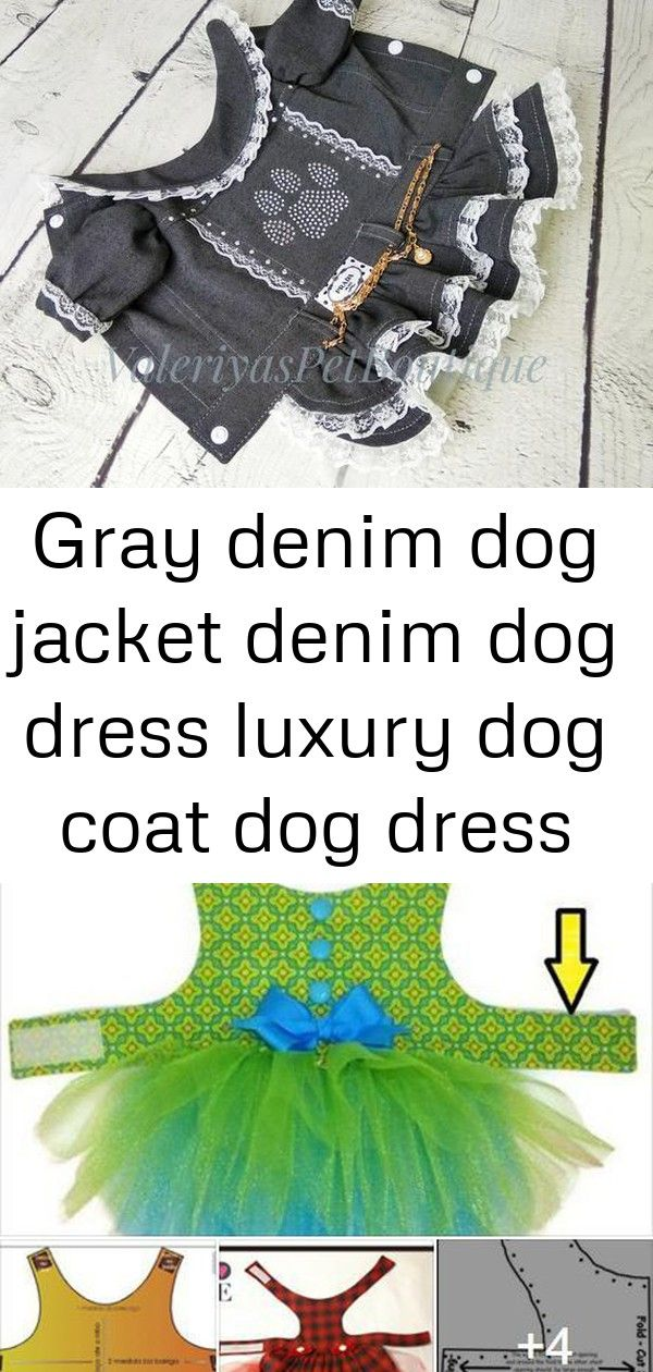 Gray denim dog jacket denim dog dress luxury dog coat dog dress with rhinestones designer dog outfit #bedfalls62