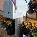 Long+Mailbox+Holder+for+6″+Pots
