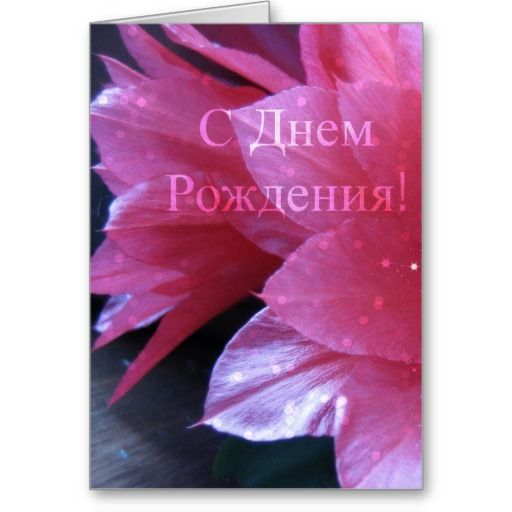 Russian Birthday Card Schlumbergera Pinterest
