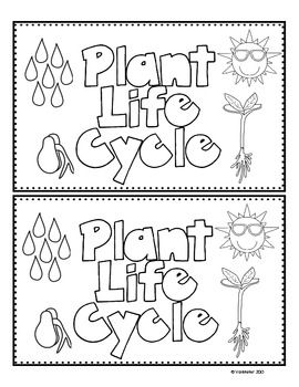 plant life cycle emergent reader freebie all things science kindergarten science. Black Bedroom Furniture Sets. Home Design Ideas