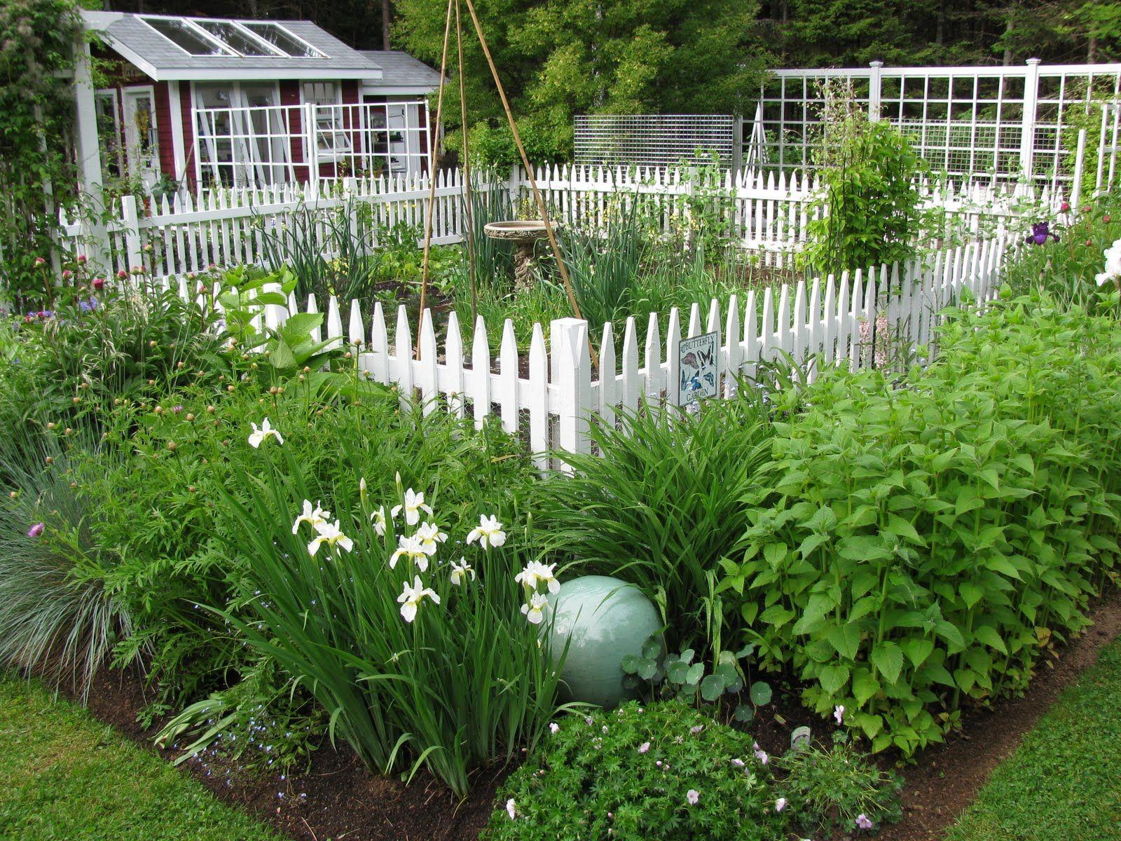 Small Garden Fencing: Wonderful Kitchen & Perennial Garden Combo!