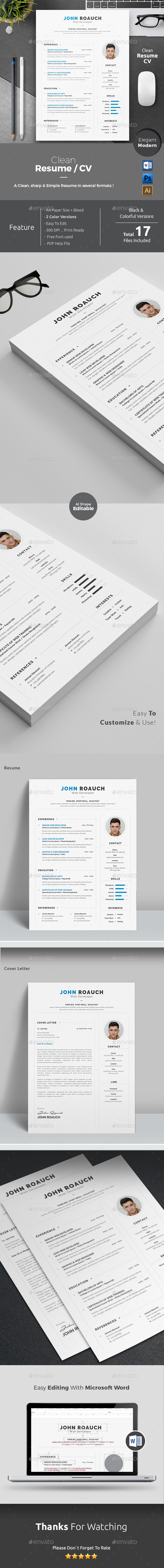 Resume Word  Professional Resume Template And Words
