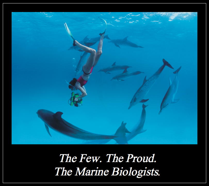 Funny Biology Pictures Funny Pictures With Captions Or Are They By Matt Shirley Marine Biology Careers Marine Biologist Marine Biology