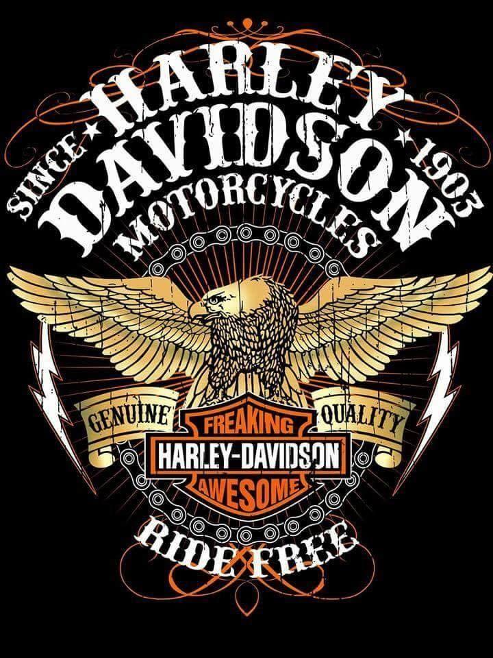 PEOPLEPLACESTHINGSETC Harley davidson art, Harley