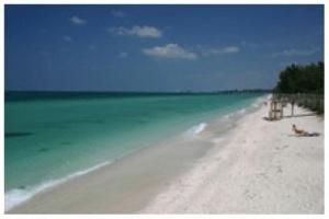 Tropical Breeze Resort Of Siesta Key Holds 100 People Price