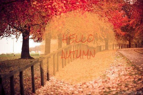 Hello Autumn quotes trees autumn leaves