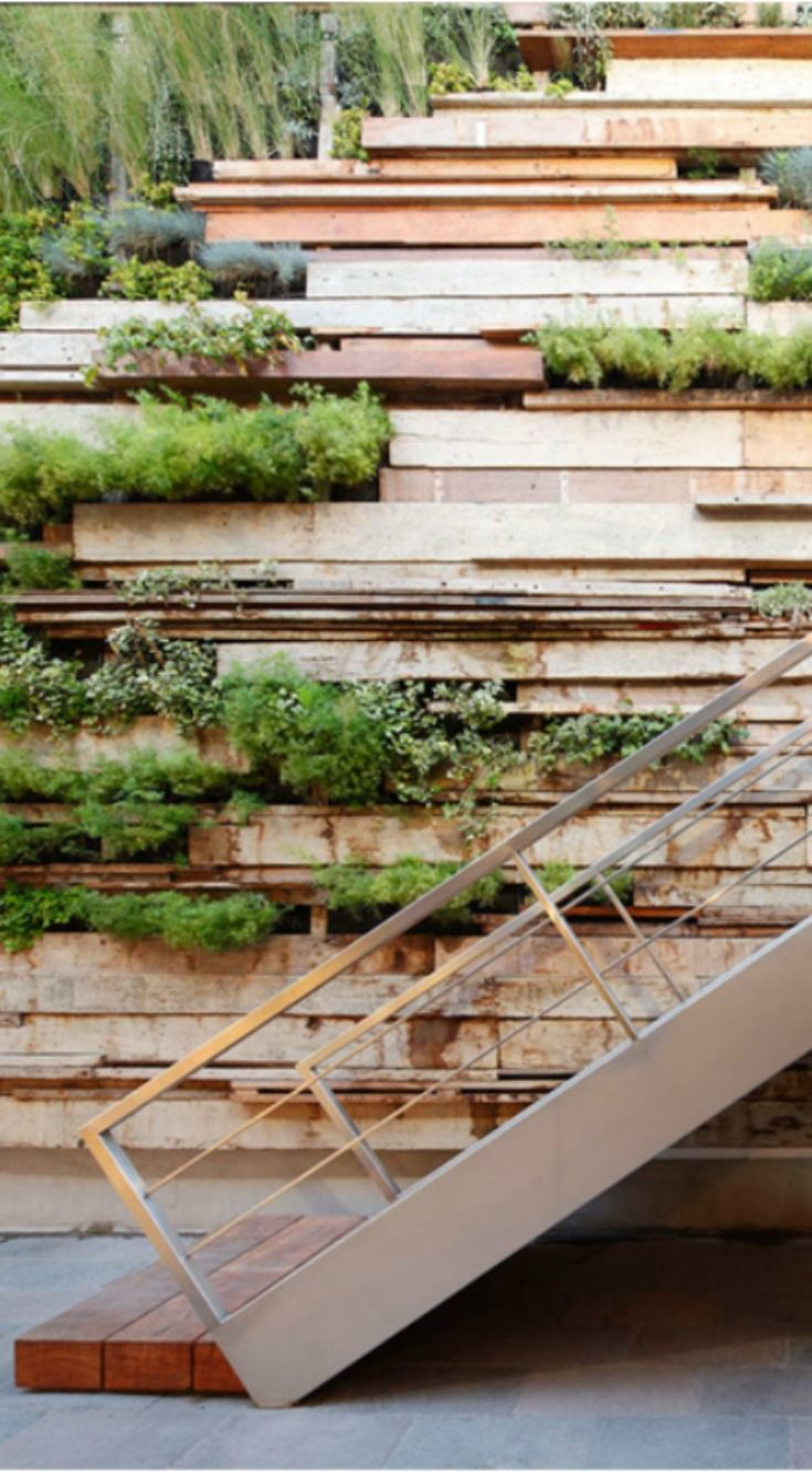 Green Walls: Living green wall at Oficinas Zentro in Lima, Peru designed by Gonzalez Moix | Scotch and Nonsense