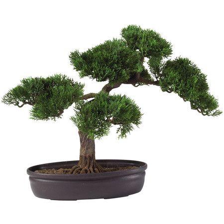 Faux Florals Cedar Plant Silk Plants Desk Top Plants