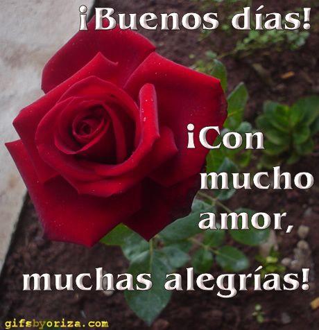 Buenos Días Con Mucho Amor Muchas Alegrías Imágenes De