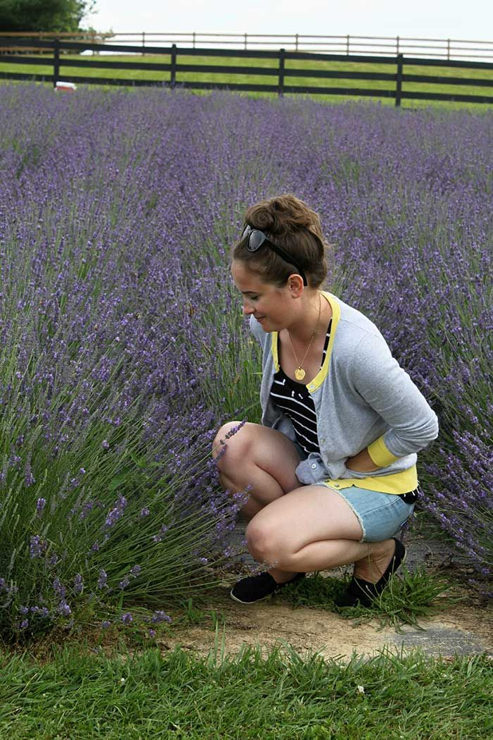 visiting a virginia lavender farm | Different things that interest