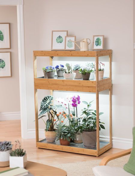 Bamboo Home Led Grow Light Garden Plant Stand Indoor Indoor Grow Lights Indoor Plant Lights