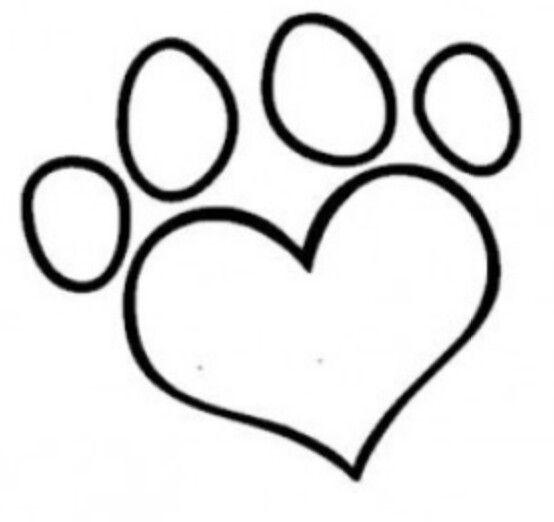 kattenpoot hondenpoten kattenpoten tekenen