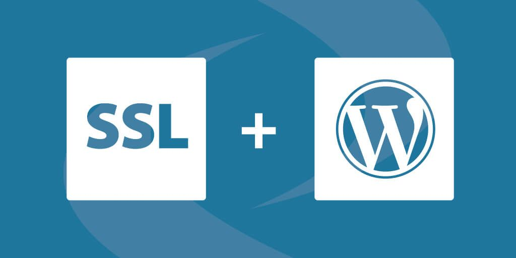 You Can Easily Install And Https Ssl Certificates For Wordpress