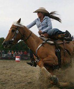 Lucas Gettin Around Barrel Racing Horses Horses Barrel Horse
