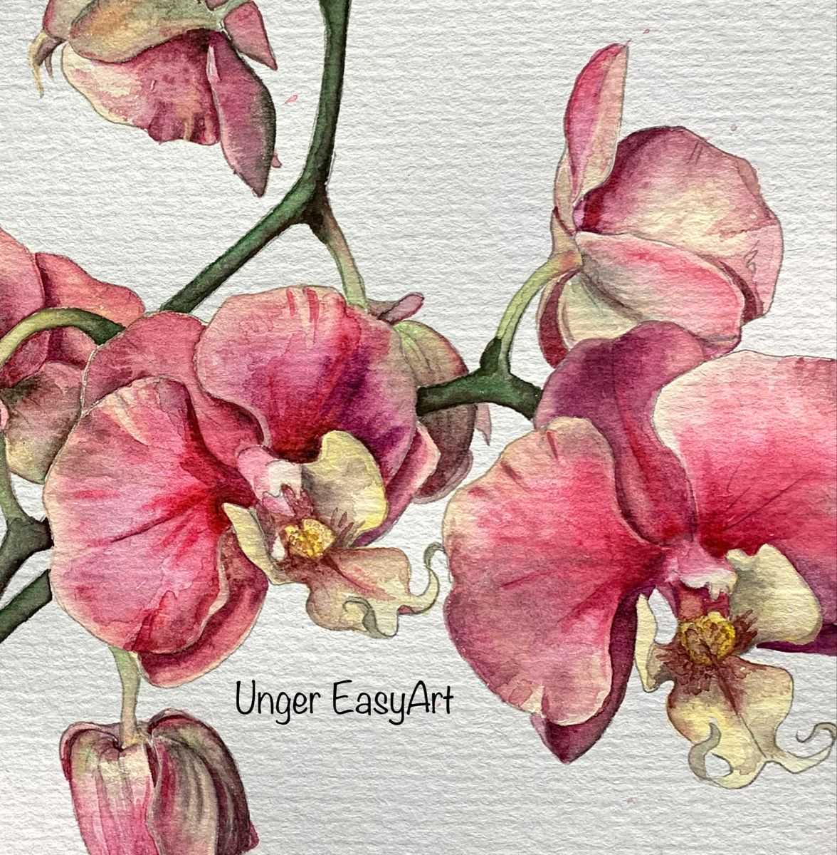 Orchid | Watercolor #orchidpainting #watercolor #floralart #phalaenopsis #orchidwatercolor #watercolorillustration