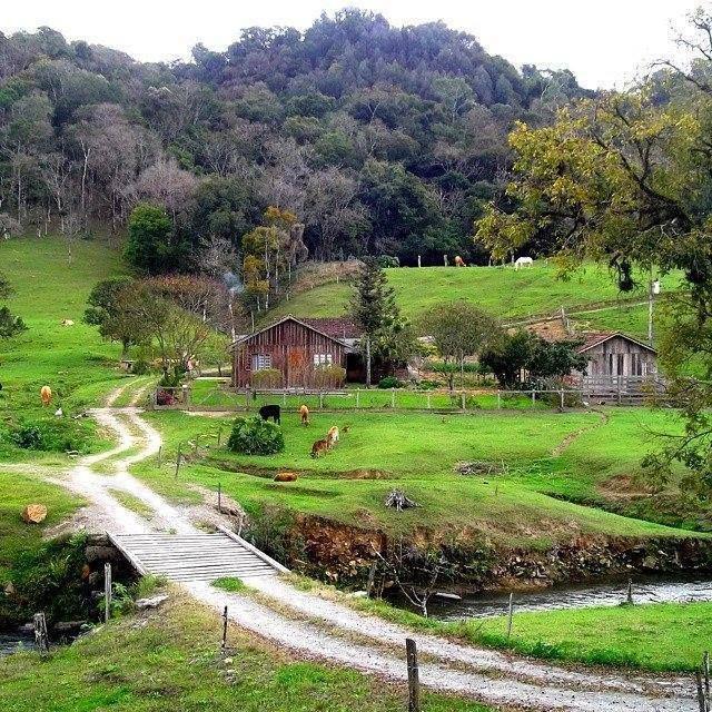 Dia A Dia Na Roca Com Imagens Paisagem Rural Lindas