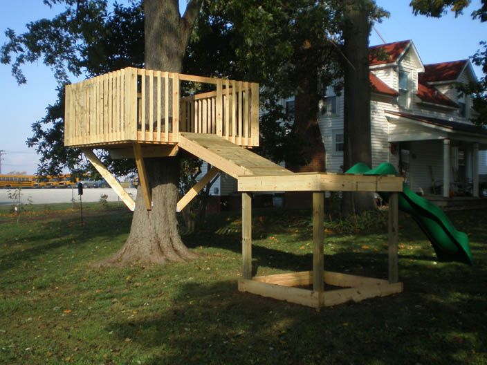 Treehouse Plans With A Slide Images