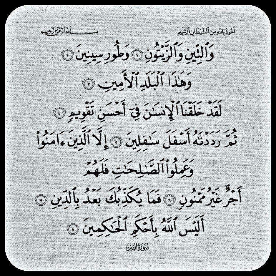 سورة التين Math Calligraphy Arabic Calligraphy