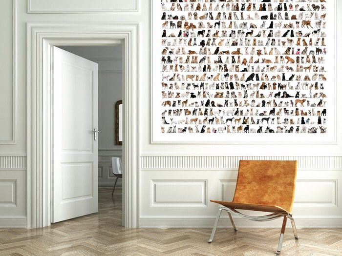 Cool And Classic Wall Murals For Home | Wallpaper murals, Wall ...