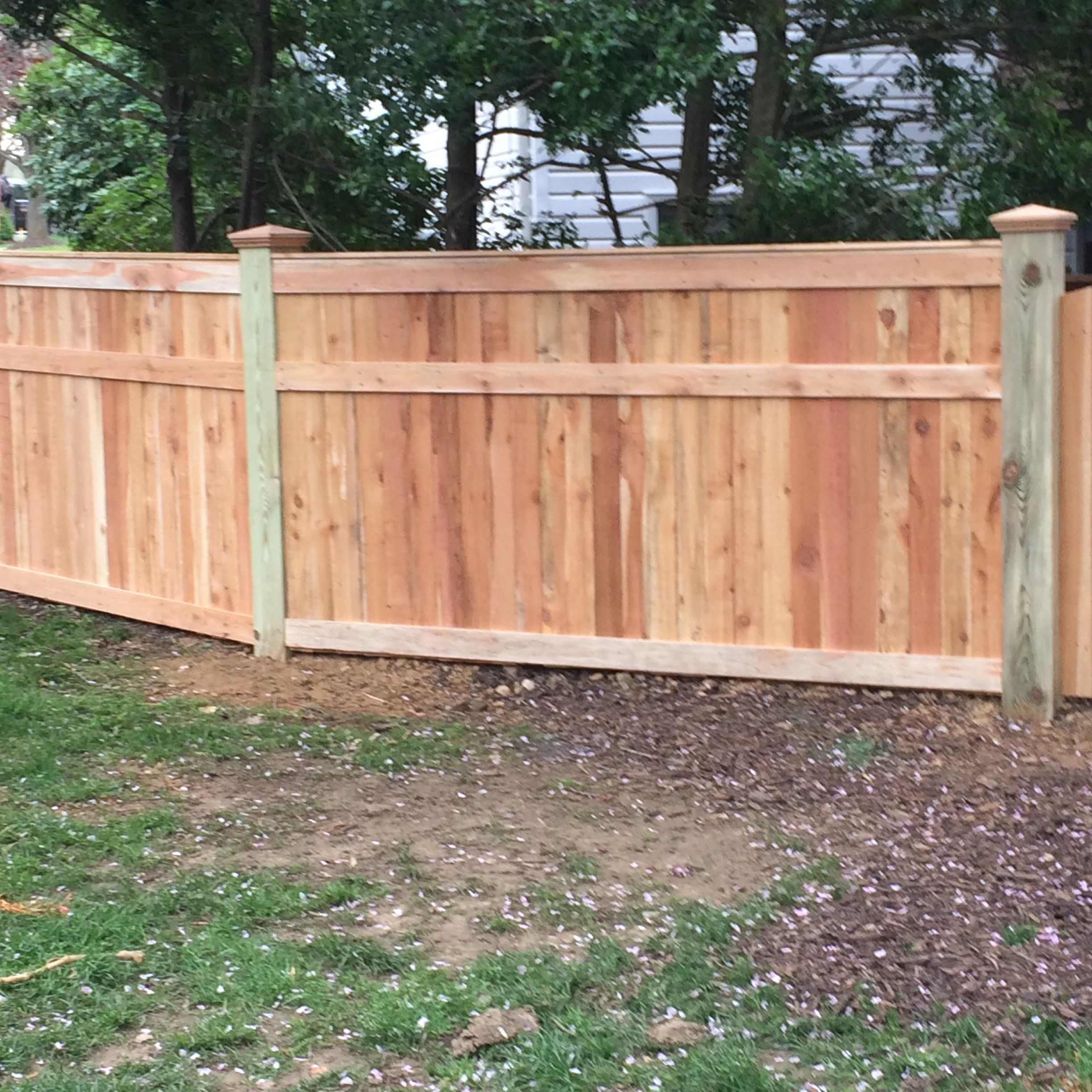 Western Red Cedar Privacy Fence With 3 Accent Boards Unique Wood Privacy Fence Privacy Fence Western Red Cedar