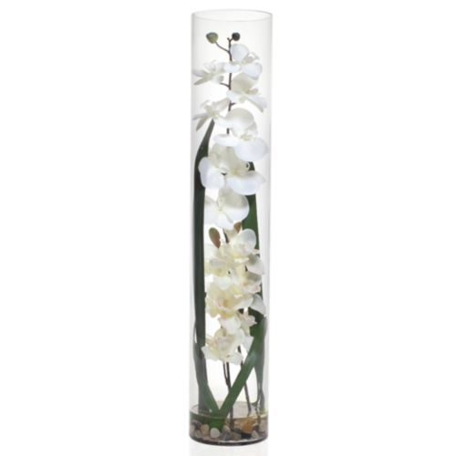 Faux Orchid In Glass Vase Tall Glass Vases Glass Vase