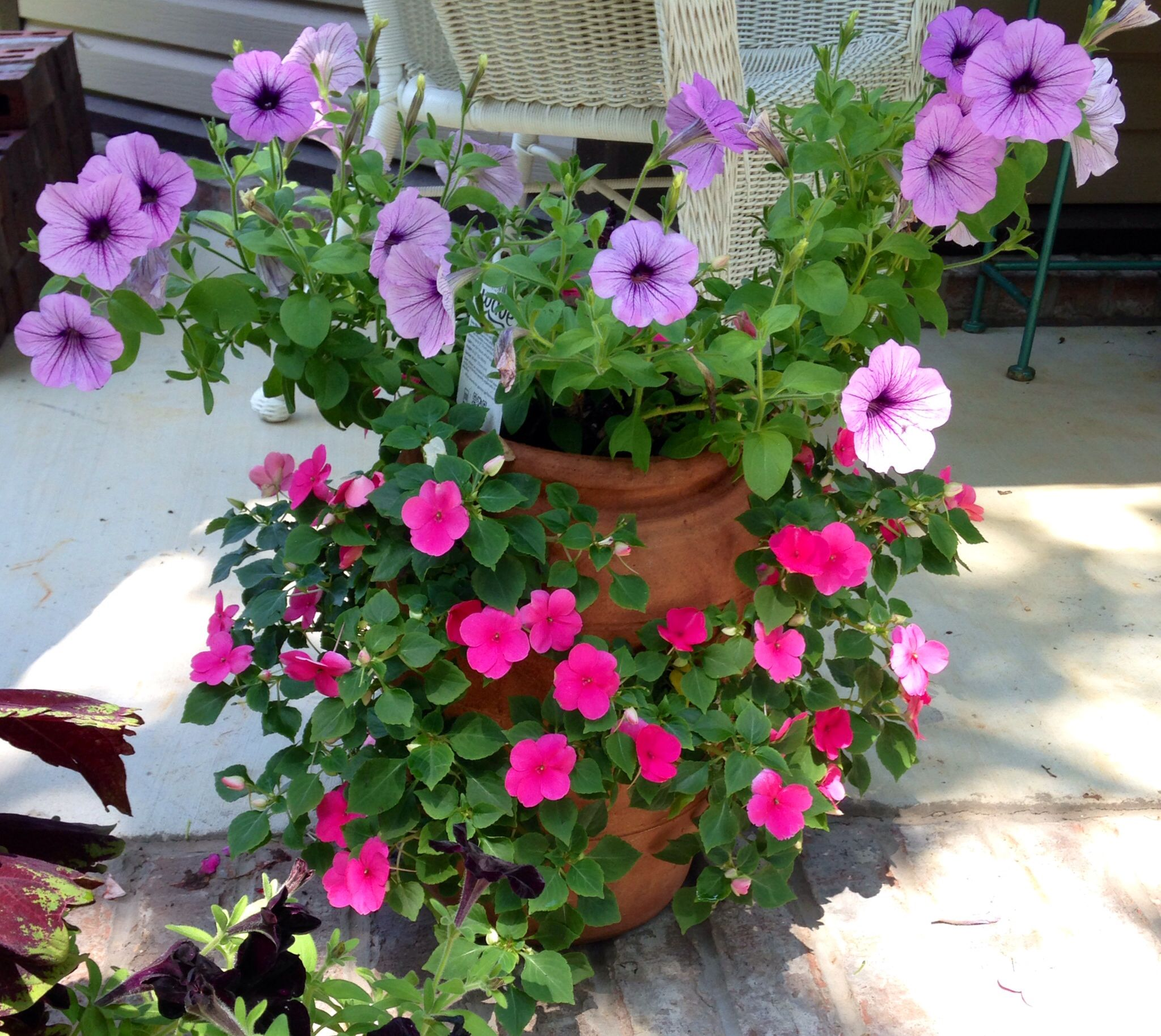 Strawberry pot filled with impatiens and petunia flowers Love these