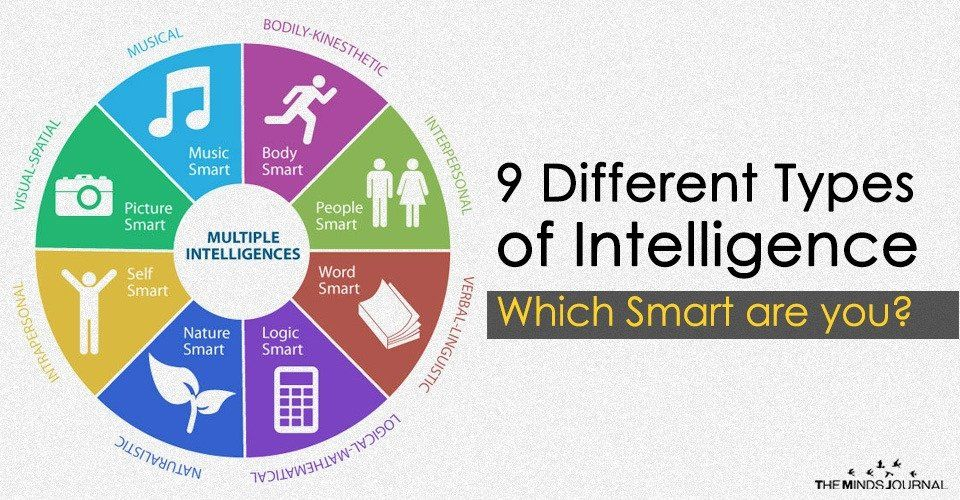 The Nine Different Types Of Intelligence Which Smart Are You