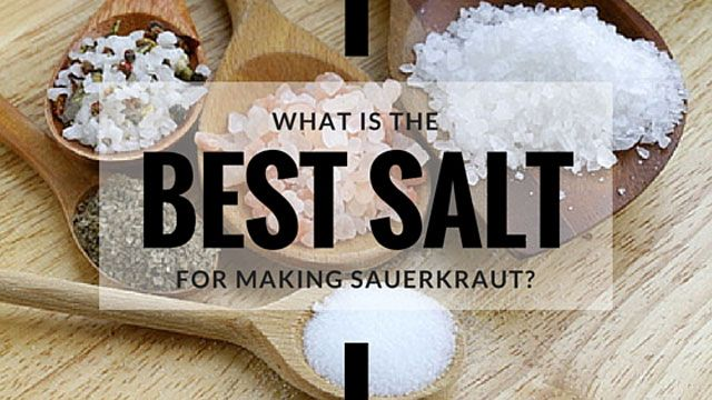 Need help selecting the best salt for sauerkraut? Which inexpensive salts work. How mineral-rich salts take fermentation to the next level. BONUS: PDF Guide