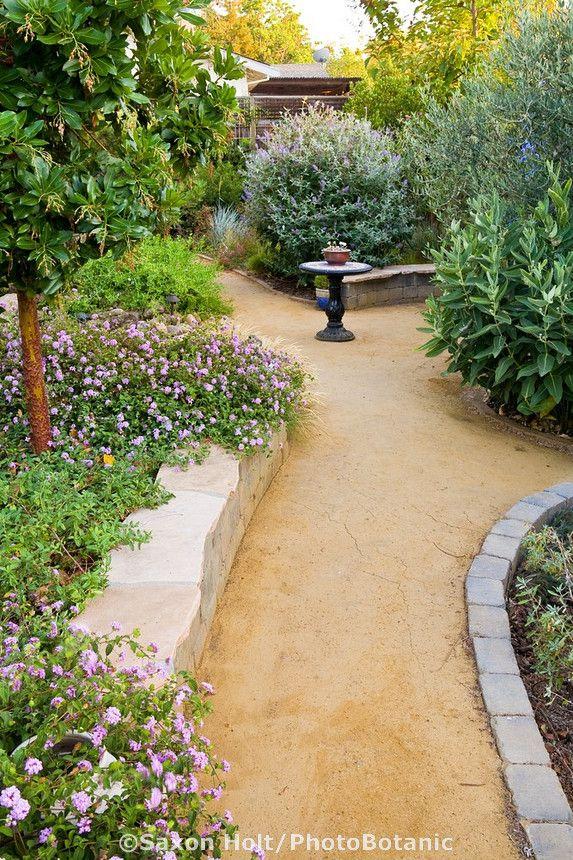 u0026 39 goldfines u0026 39  decomposed granite crushed rock path in california backyard drought tolerant garden