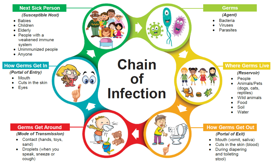 Ch. 19 Disease Transmission & Infection Prevention - Lessons - Tes Teach