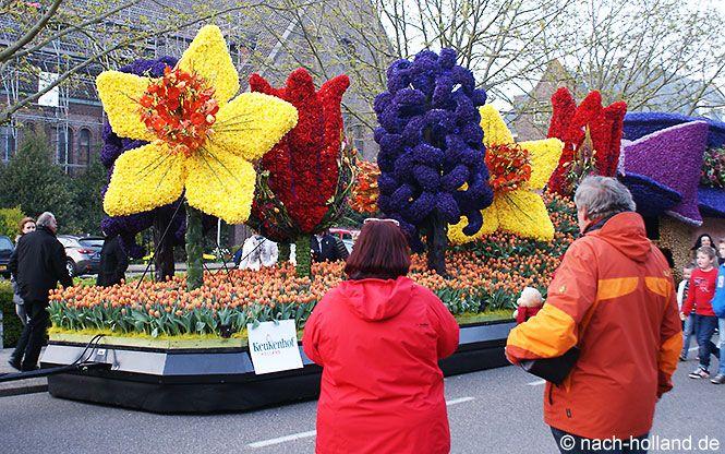 Der Blumenkorso Im Bollenstreek Ein Duftendes Farbspektakel Holland Blumen Tulpen