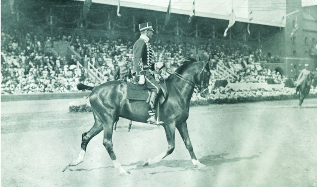 Dressage in the Olympics: From 1912 To The Present
