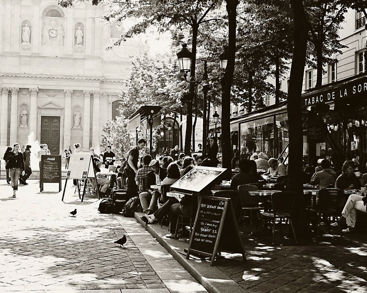 parisian+cafes+photos | paris cafe print - tabac de la sorbonne