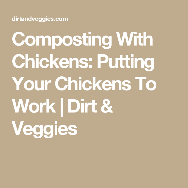 Composting With Chickens: Putting Your Chickens To Work | Dirt & Veggies