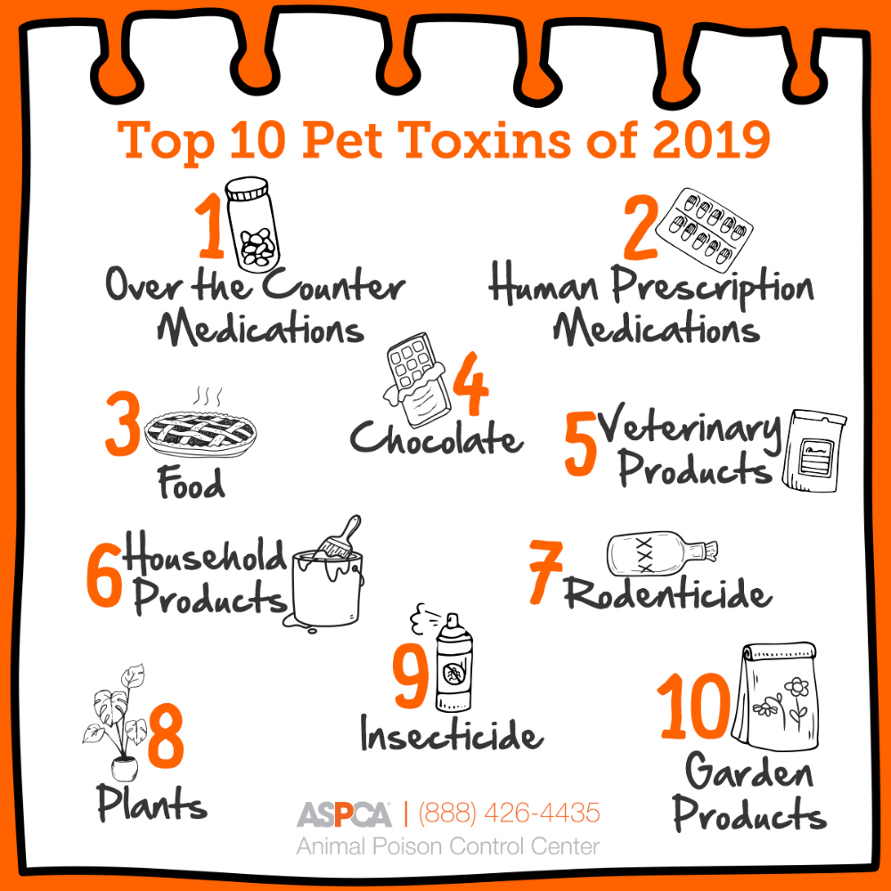 Announcing The Top 10 Pet Toxins! in 2020 Medical