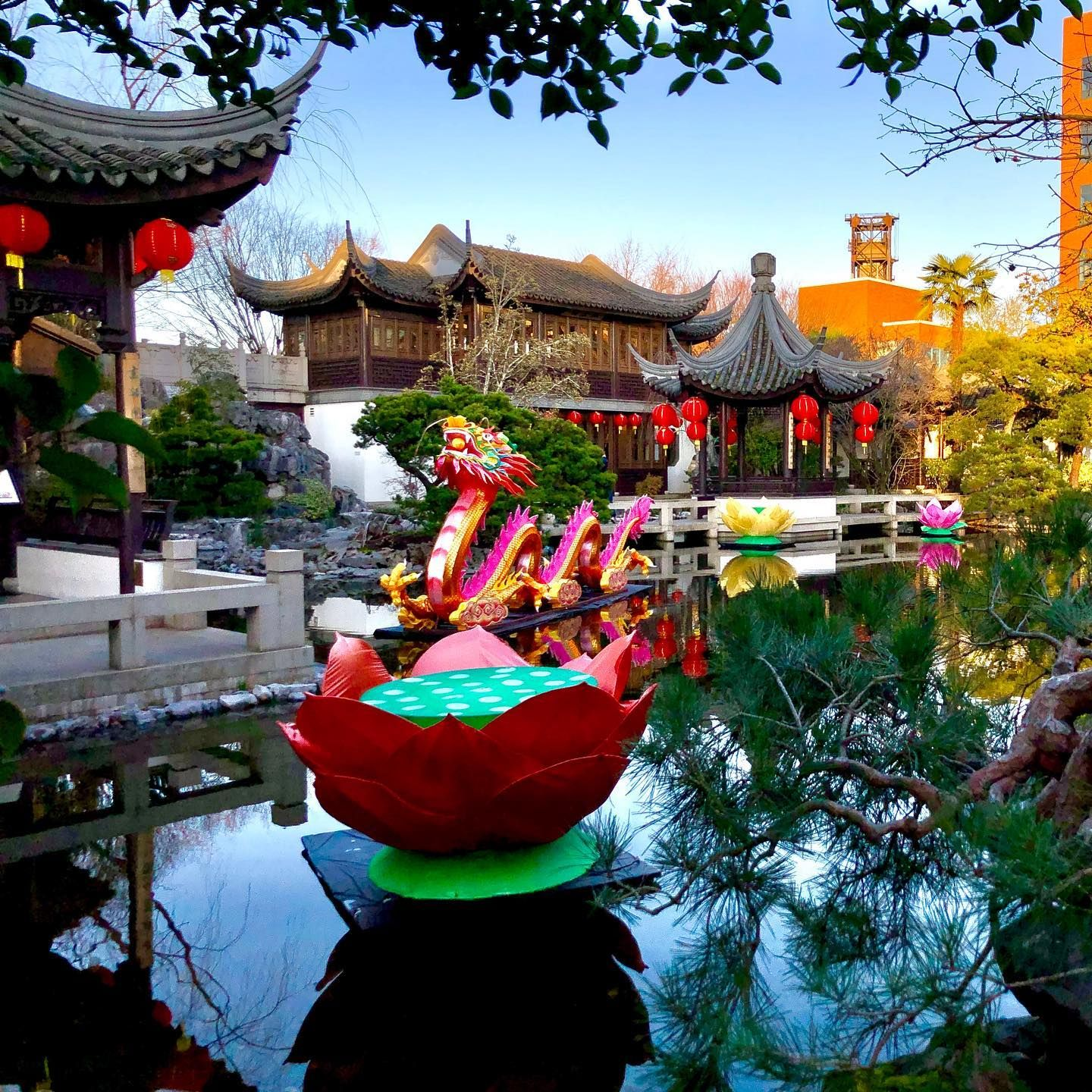 The lansuchinesegarden all dressed up for Year of the Rat