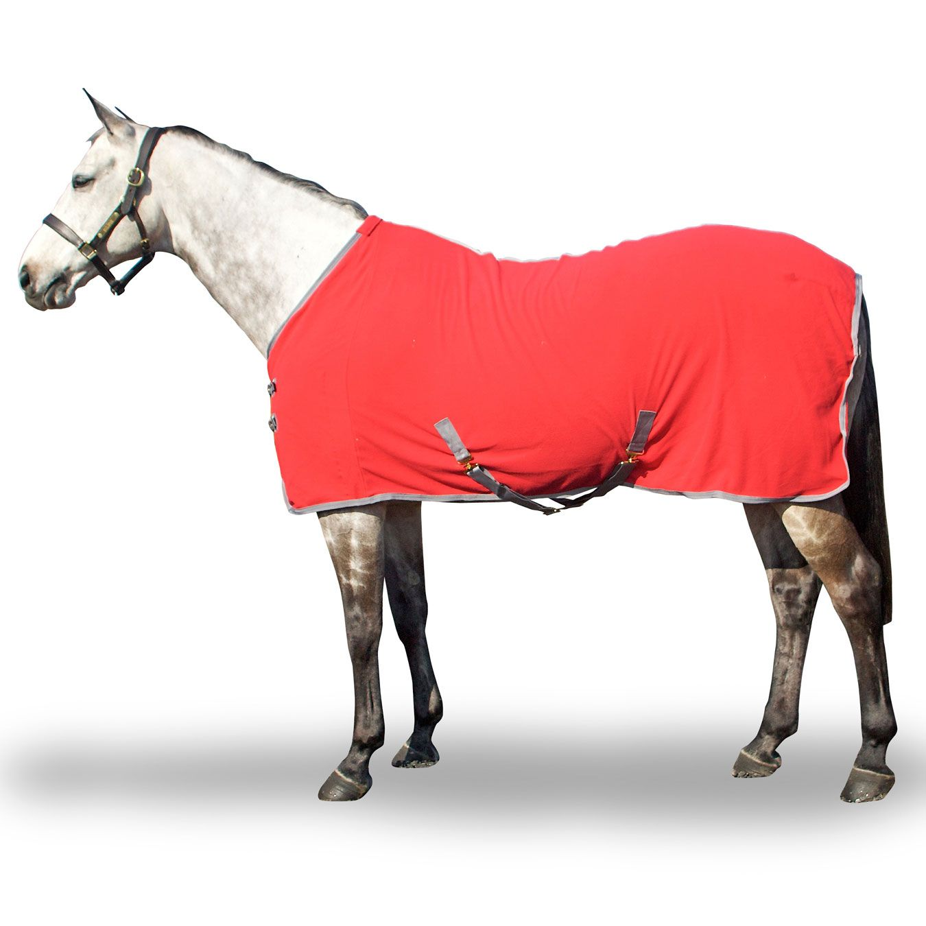 Derby House Fleece Sheets Coolers And Fleeces Horse Rugs