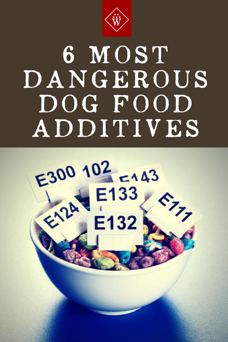 6 Most Dangerous Dog Food Additives Dog food recipes