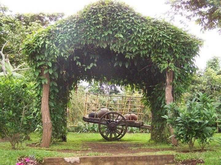 Celeste S Garden Hotel Apaneca El Salvador Hotel El Jardin De Celeste Photo By Ana Silva Central America San Salvador El Salvador
