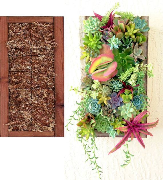 Succulent planter vertical wall planter do it yourself vertical succulent planter vertical wall planter do it yourself vertical planter have your own succulents but not solutioingenieria Choice Image