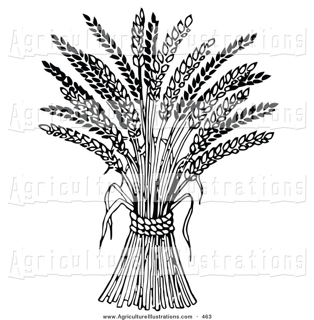 Agriculture Clipart Black And White Agriculture Cli...