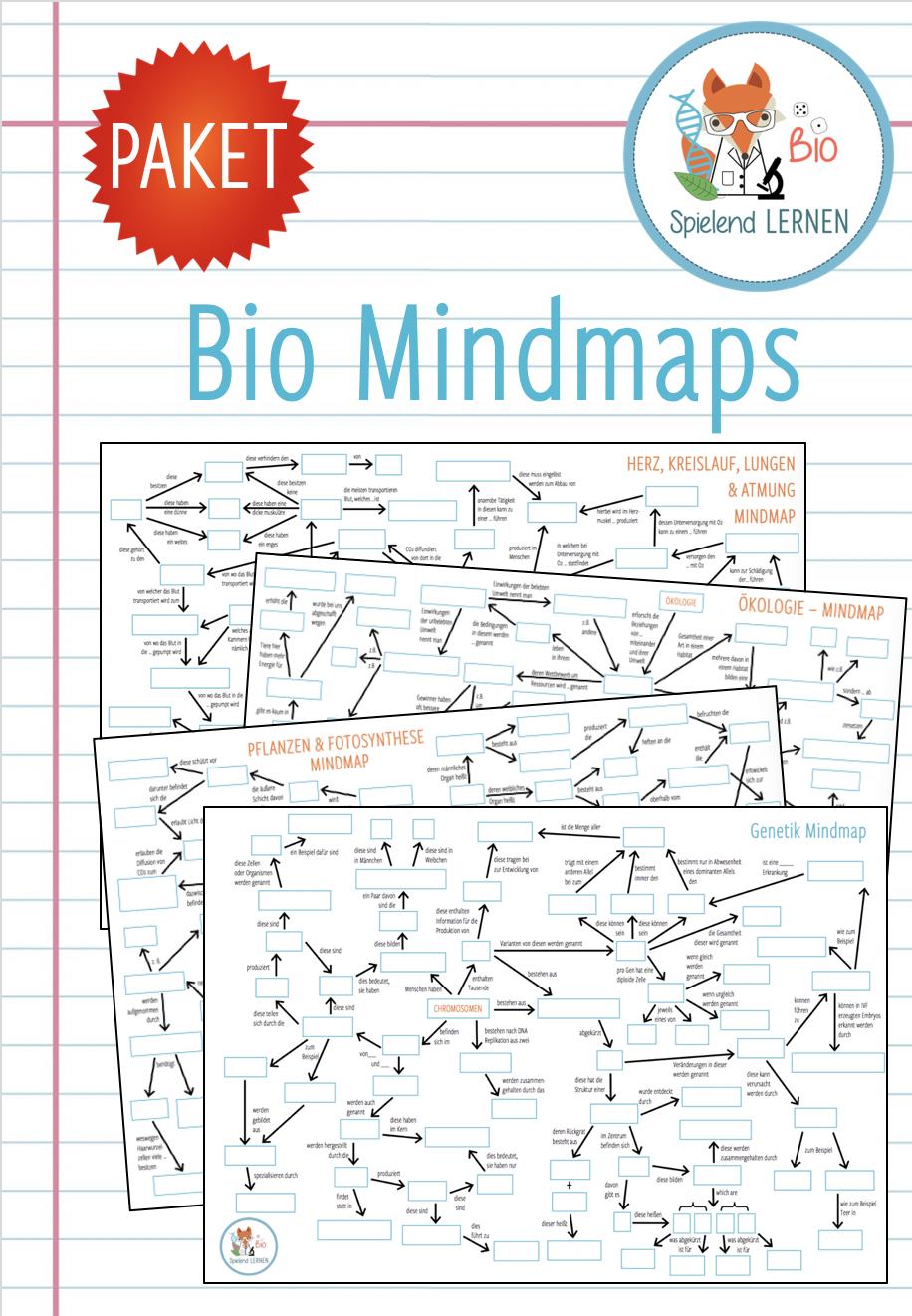 20x Bio Mindmaps – Unterrichtsmaterial im Fach Biologie ...